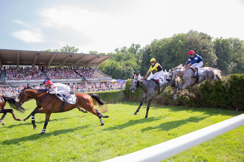 Drei Reiter überspringen mit ihren Rennpferden ein Hindernis auf der Pferderennbahn in Aarau