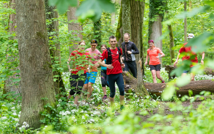 Gruppe Jogger unterwegs im Wald