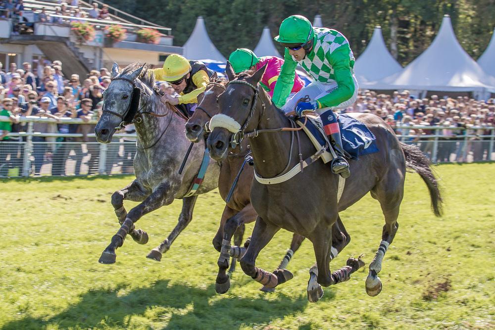 Drei Reiter liefern sich ein spannendes Duell auf der Zielgerade im Aarauer Schachen