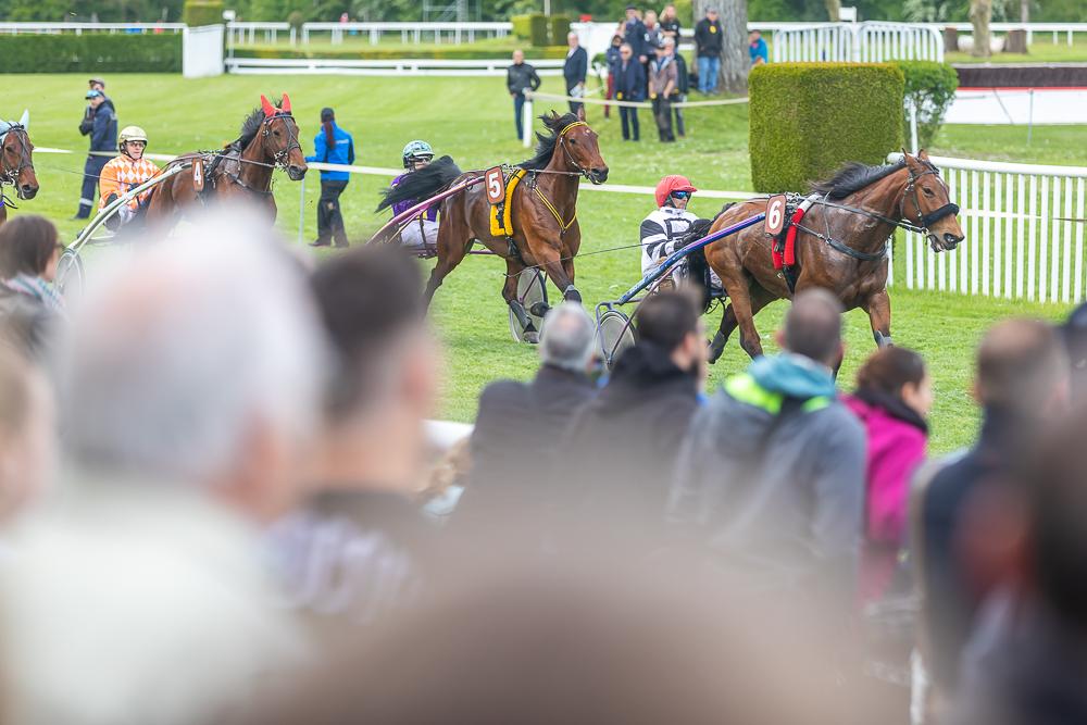 Die Zuschauer im Aarauer Schachen verfolgen ein Pferderennen