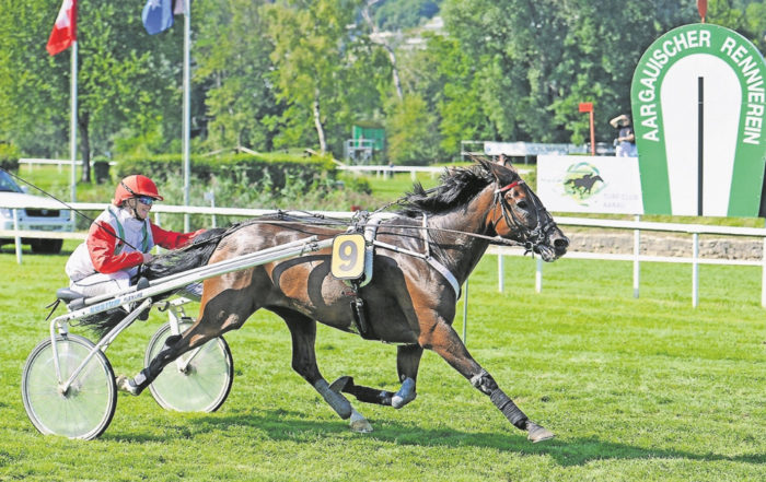 Das Rennpferd Swedishman gewinnt in Aarau
