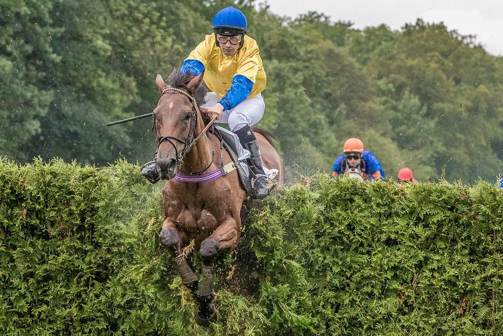 Pferd und Reiter springen über ein Hindernis